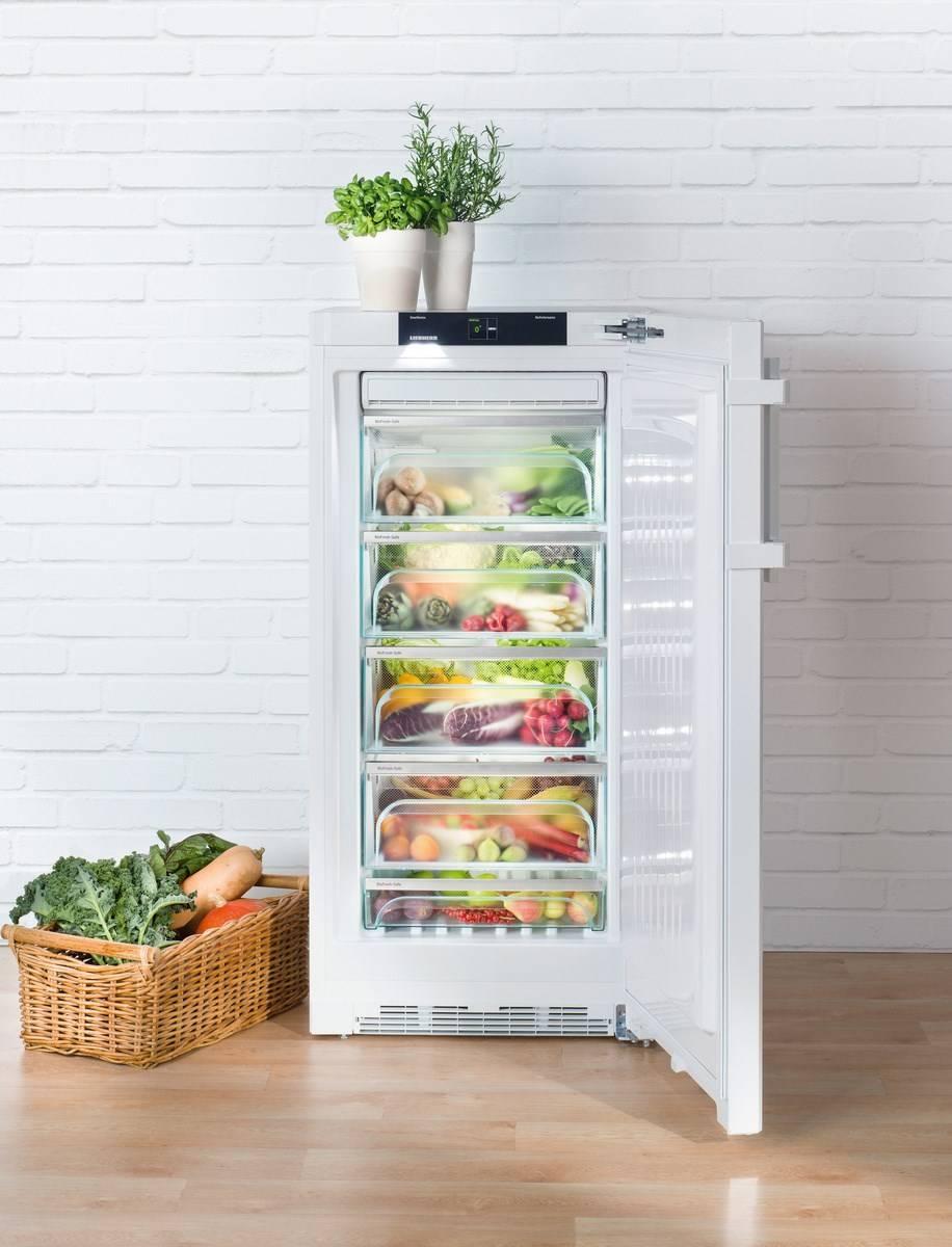 Liebherr BP 2850-20 Kühlschrank günstig online kaufen